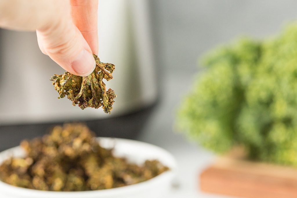 A person holding up a single kale chip .
