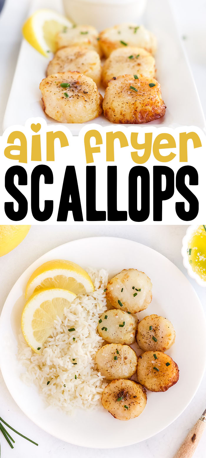 These scallops are coated with lemon and garlic and ready to eat in 15 minutes! #airfryer #recipes #scallops
